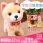 韩国会学说话智能狗儿童仿真毛绒电子电动玩具狗女孩机器宠物小狗宠物狗简易包装电池版
