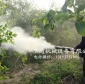 脐橙园打药弥雾机背负式大棚打药机新款脉冲式弥雾机